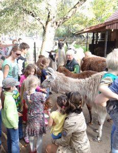 Deutscher Zootag – ENTFÄLLT