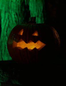 Tierische-Halloween-Party – ENTFÄLLT