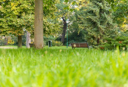 Jürgen-von-Woyski-Park