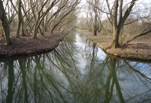 Hochwasserentlastungsgraben_Bueschingsgraben Stadtgebiet