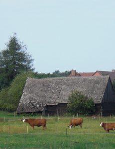 Hofbuchlesung an der KRABAT-Mühle Schwarzkollm