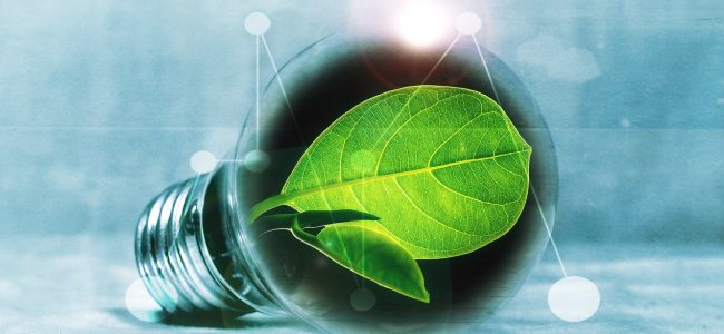 Glühbirne mit Blatt - Symbol für Energiewende